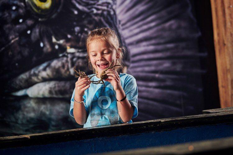 Barn holder to krabber i hendene