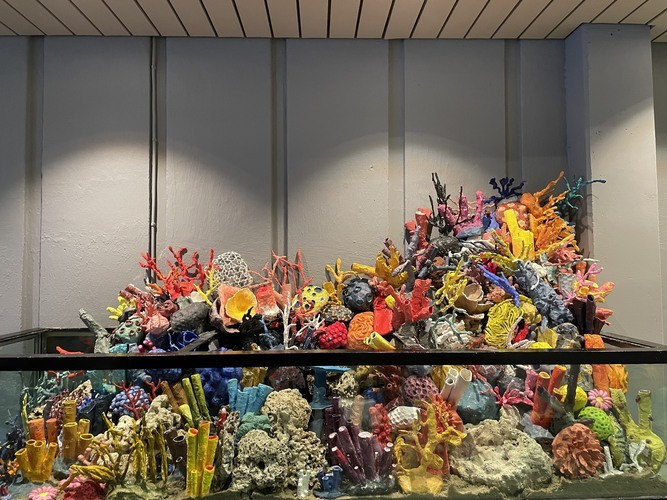 Fiktivt korallrev laget av Rothaugen Skole