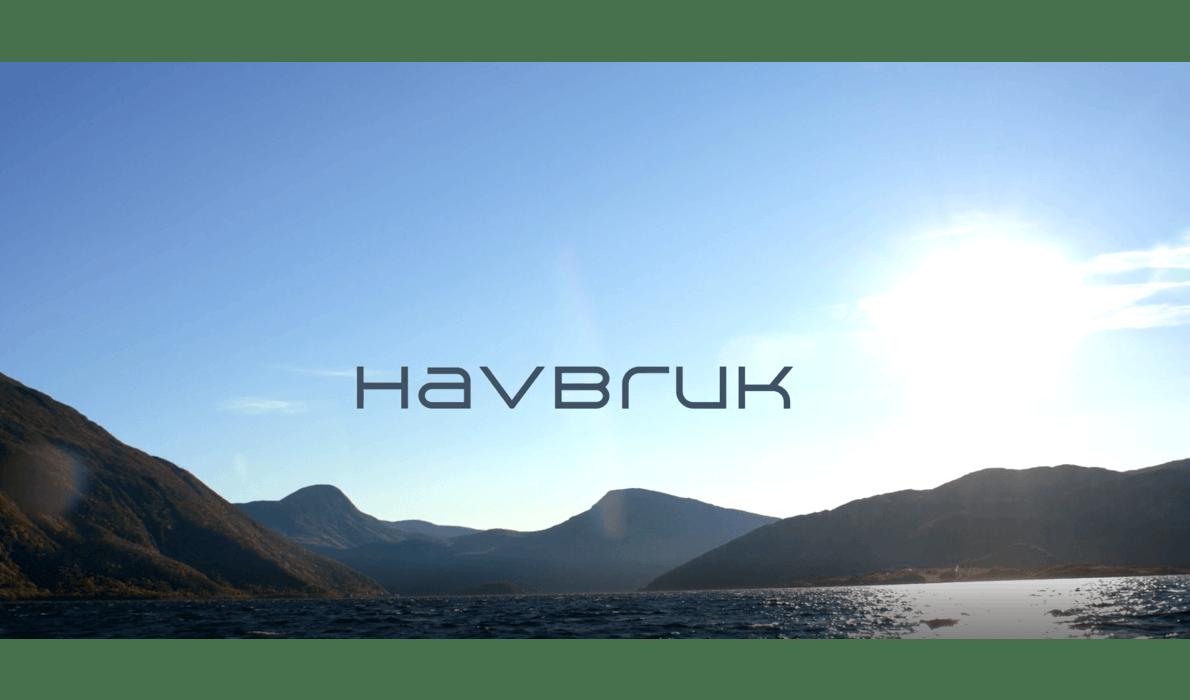 Jakta på fakta: Havbruk