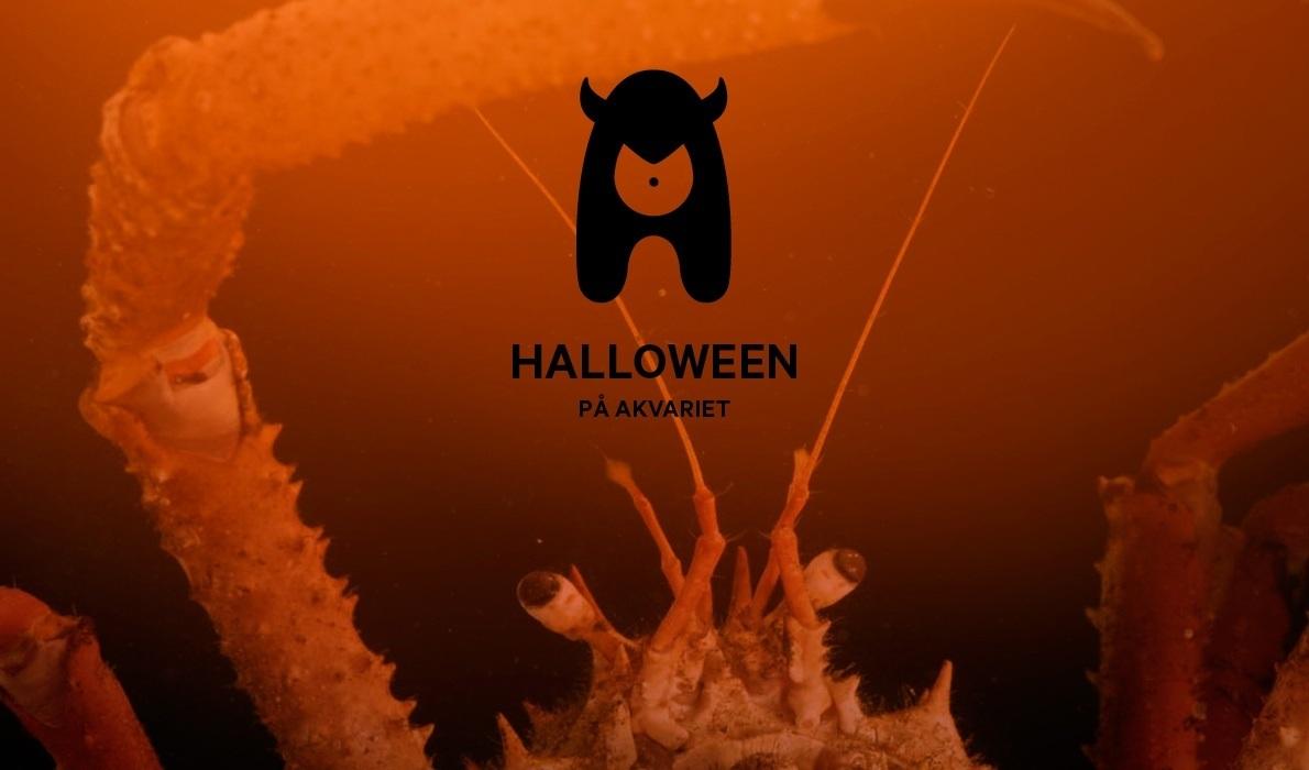 Halloween på Akvariet 28. oktober
