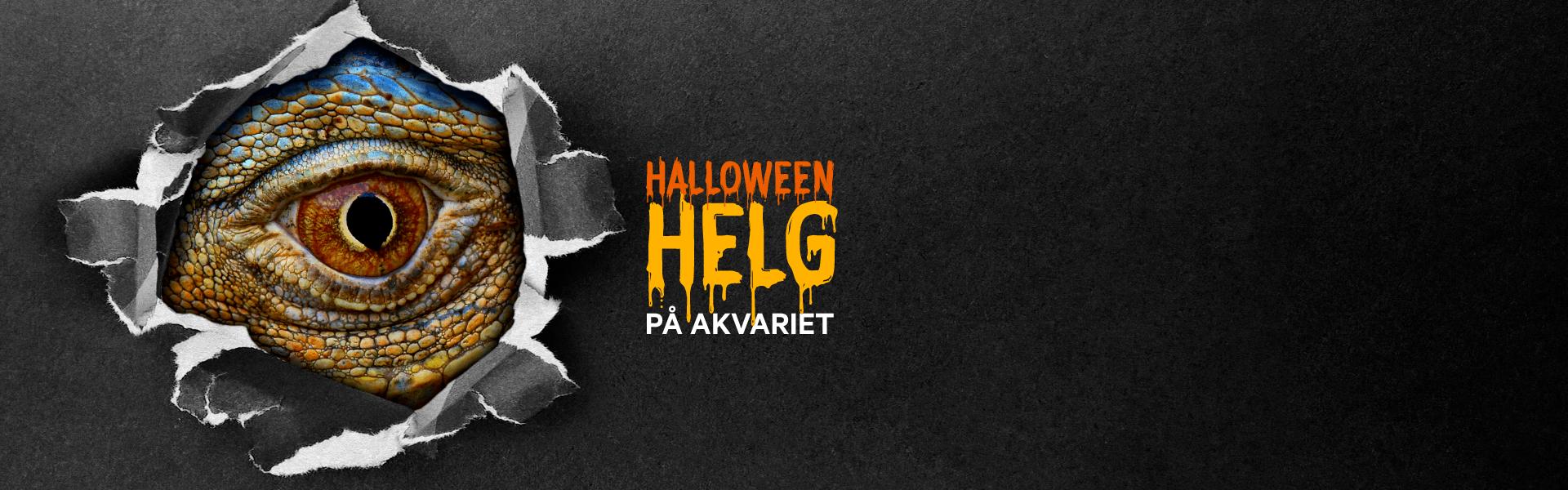 Halloweenhelg