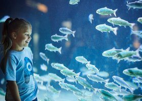Akvariet i Bergen vertskap for internasjonal konferanse i 2020