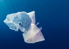 An ocean of garbage
