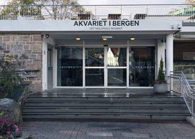 Akvariet i Bergen er blitt fullverdig medlem i WAZA