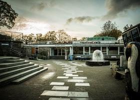 Uteområdet på Akvariet i Bergen