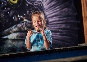 Akvariet holder dessverre stengt fra lørdag 7. november til mandag 30. november.