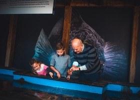 Velkommen til Akvariet i Pinsehelgen, åpent kl 10 - 18 hver dager!