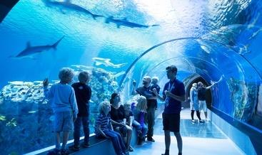 Nye Akvariet skal bli verdensledende