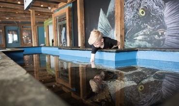 Akvariet har åpent i julen!