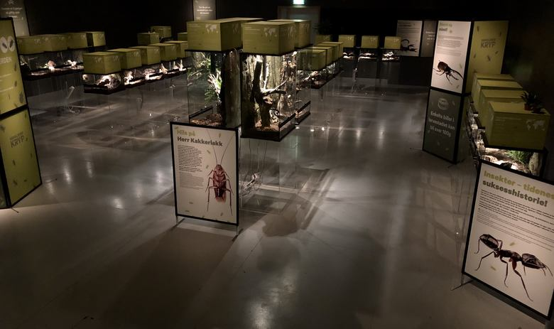 Kravlende kryp fra Akvariet over hele landet
