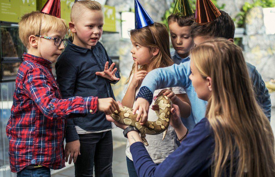 Barn tar på en slange i følge med dyrepasser på Akvariet