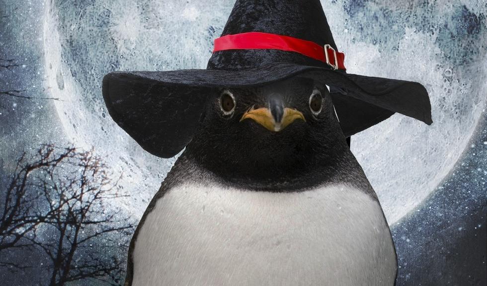 Pingvin i heksekostyme